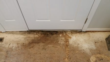 water stained subfloor