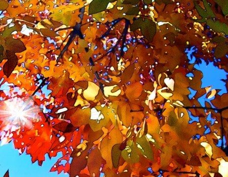 Fall Maintenance Checklist for Minnesota Homeowners