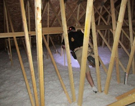Home Inspector in Attic