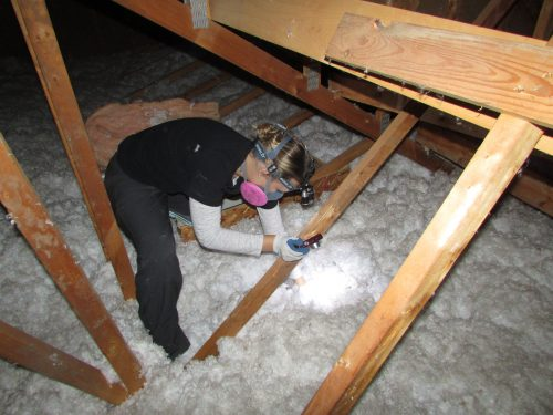 Tessa in attic