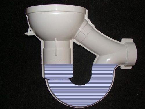 Floor drain trap