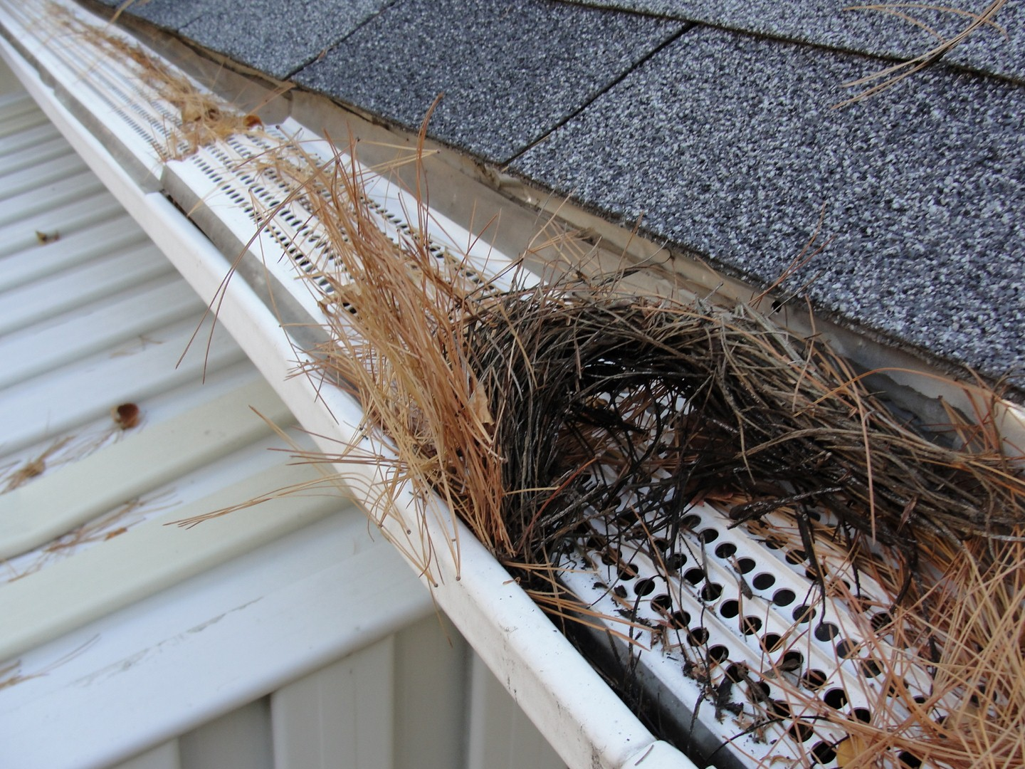 Are Gutter Guards Worth It Structure Tech Home Inspections