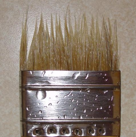 disintegrated bristled on brush