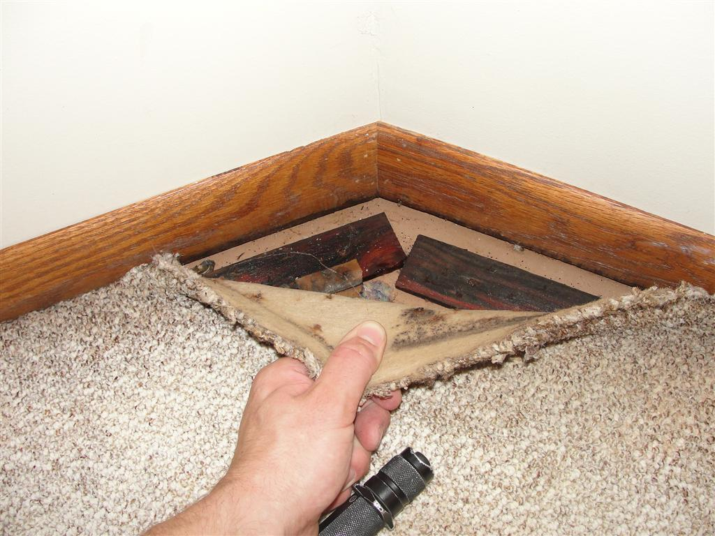 Wet tack strips in basement